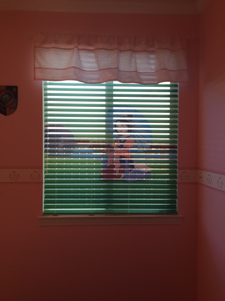 Mulan window shade open